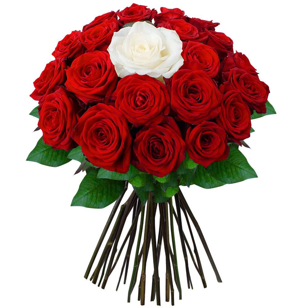 появилось букеты из роз двух цветов смотреть фото кто